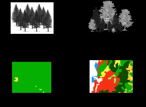 Illustration de la relation entre l'hétérogénéité d'un paysage et la biodiversité